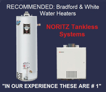 info graphic; bradford and white water heaters and noritz tankless recommended by champion plumbing