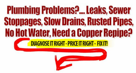 info graphic; plumbing problems.... leaks, sewer stoppages, slow drains, rusted pipes, no hot water, need a copper repipe?